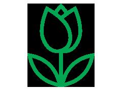 icon-spring